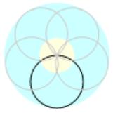 梅は花びらを円で描く